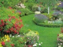 Растения в ландшафтном дизайне 51 фото гейхера хосты и хвойные сочетание групп с теневыми кустами и выбор стилей японский или хай-тек