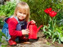 How To Choose a Watering Can Like a Pro 11