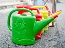 How To Choose a Watering Can Like a Pro 12