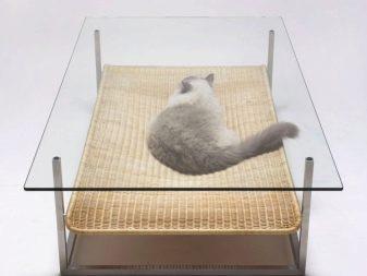 Необычные столы (25 фото): столик овальной формы с печатью для гостиной и оригинальные стулья под - старину