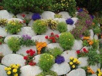 Оформление клумб и сада