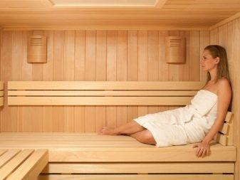 Дизайн бани с комнатой отдыха,типы конструкций, материалы, стили оформления