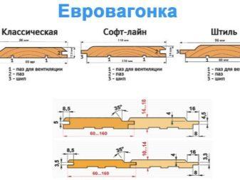 Особенности вагонки из липы