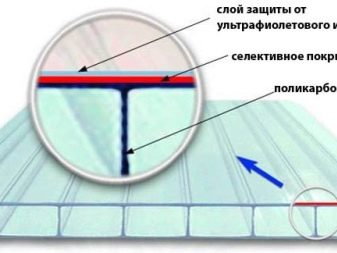 Размеры теплиц из поликарбоната — критерии выбора