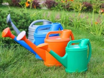 How To Choose a Watering Can Like a Pro 1