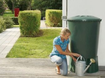 How To Choose a Watering Can Like a Pro 5