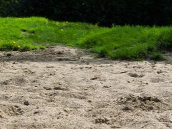 gazon-na-peske-osobennosti-i-uhod-1.jpg