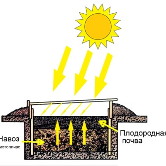 Теплица из поликарбоната своими руками  чертежи, схемы, фото