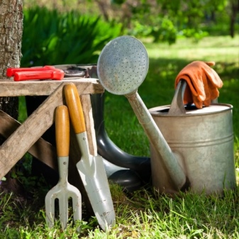 How To Choose a Watering Can Like a Pro 15