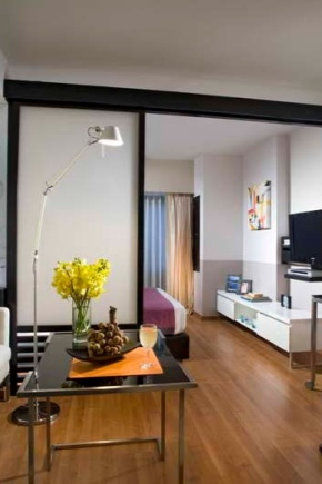 Планировка квартиры-студии площадью 24 кв. м