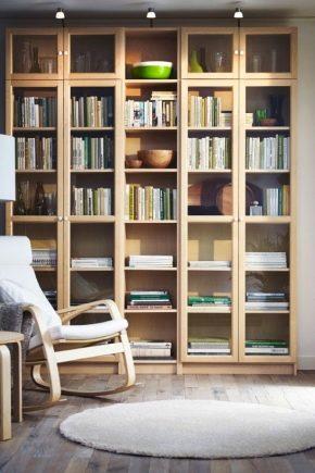 Книжный шкаф со стеклянными дверцами фото дизайн