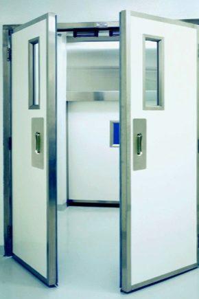 Маятниковые двери: плюсы и минусы