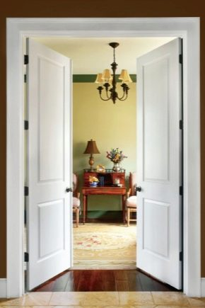 Двустворчатые двери: как правильно выбрать?