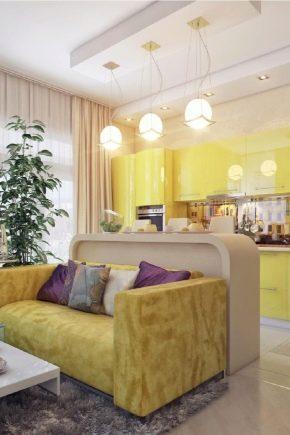 Интерьер совмещенной кухни в частном доме: дизайнерские идеи оформления