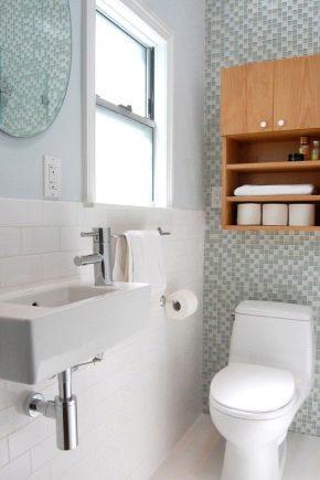 Особенности и разновидности маленьких раковин для туалета