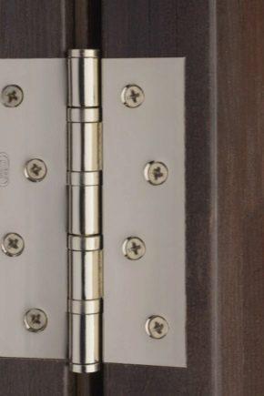 Дверные петли: типы, особенности выбора и установки