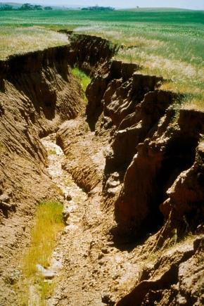 Что такое эрозия почвы?