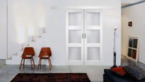 Двери «Софья»