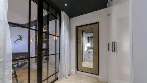 Металлические двери с зеркалом: плюсы и минусы