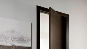 Продукция компании «Дом дверей»: виды и особенности