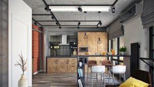 Однокомнатная квартира в стиле «лофт»: примеры оформления