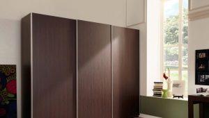 Шкафы цвета «венге» в современном интерьере