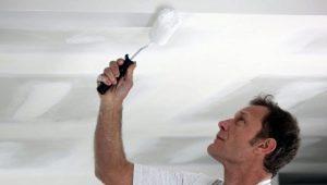Белая водоэмульсионная краска: советы по выбору