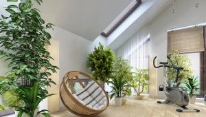 Цветы и растения в интерьере квартиры