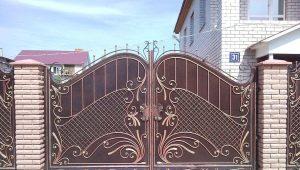 Как выбрать ворота: характеристика популярных видов