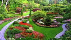 Направления ландшафтного дизайна: особенности и характерные черты