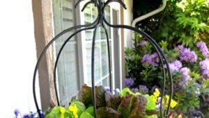 Вазон – стильное украшение для дачи и улицы