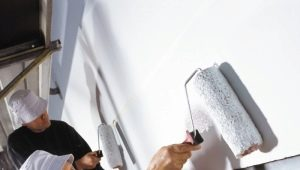 Грунтовка стен под обои: качественная отделка