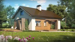 Проекты одноэтажных домов с мансардой: выбор дизайна для коттеджа любой площади