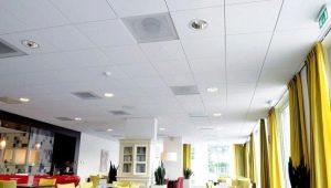 Тонкости монтажа потолка Armstrong