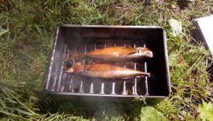 Как в домашних условиях сделать коптильню для рыбы?