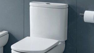 Крышки-сиденья для унитаза Roca: выбор из широкого ассортимента