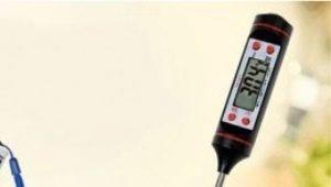 Термометр для барбекю: какой бывает и для чего нужен?