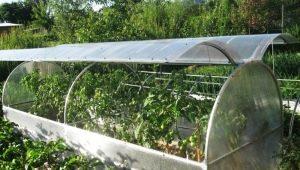 Виды и особенности теплиц с открывающейся крышей