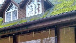 Мягкие окна: что это такое и где применяются?