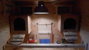 Обогрев курятника зимой: способы отопления и подходящие виды электроприборов