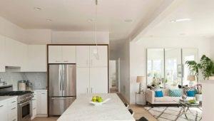 Формы и особенности дизайна кухонь, совмещенных с гостиной