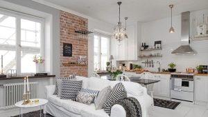 Кухня-гостиная площадью 25 кв. м: тонкости проектирования и варианты дизайна