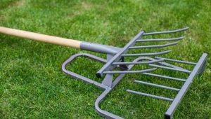 Чудо-лопата: назначение и правила эксплуатации