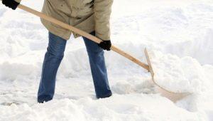 Деревянные лопаты: плюсы, минусы и рекомендации по выбору