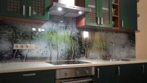 Экраны для кухни: виды, дизайн и советы по выбору