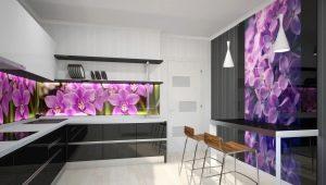 Прозрачные стеклянные фартуки для кухни: особенности и советы по оформлению