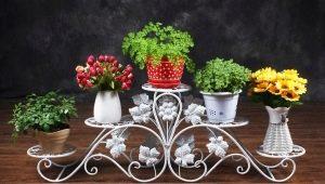Виды и характеристика напольных металлических подставок для цветов