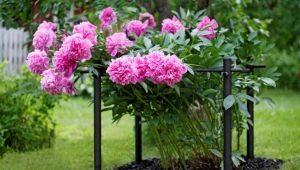 Виды и характеристики опор для цветов