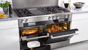 Кухонные плиты Gefest: характеристики, виды и ремонт