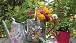 Лейка для цветов: особенности выбора